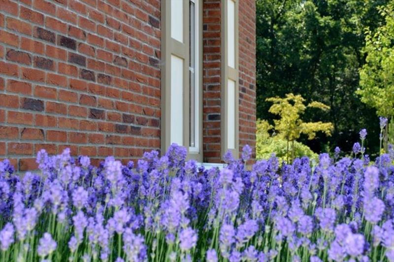 Vakantiehuis te koop in Arcen Limburg Klein vink detail tuin