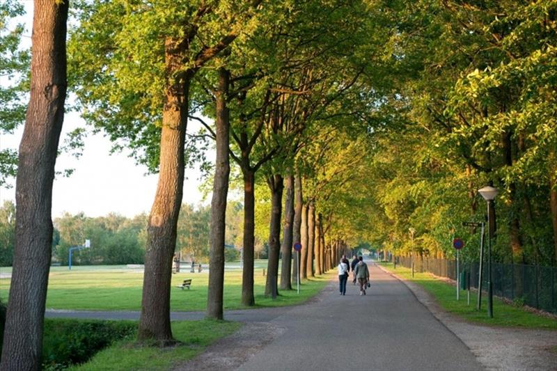 Vakantiehuis te koop in Arcen Limburg park Klein Vink omgeving