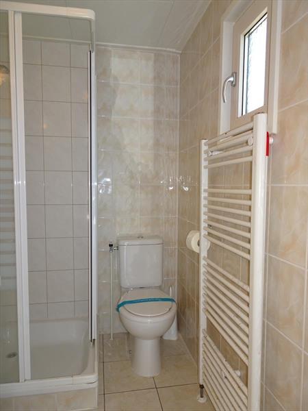 Vakantiehuis te koop Gelderland Arnhem. Badkamer met toilet, designradiator en toilet.