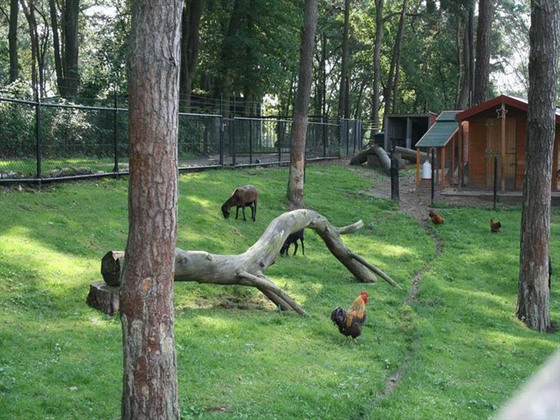 Vakantiehuis te koop Limburg Brunssum Akerstraat 153 K165 Resort Brunssummerheide Op het park