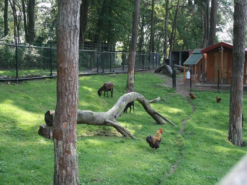 Vakantiehuis te koop in Brunssum park