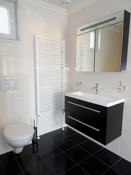 Vakantiehuis te koop Zuid Holland Park De Biesbosch Badkamer