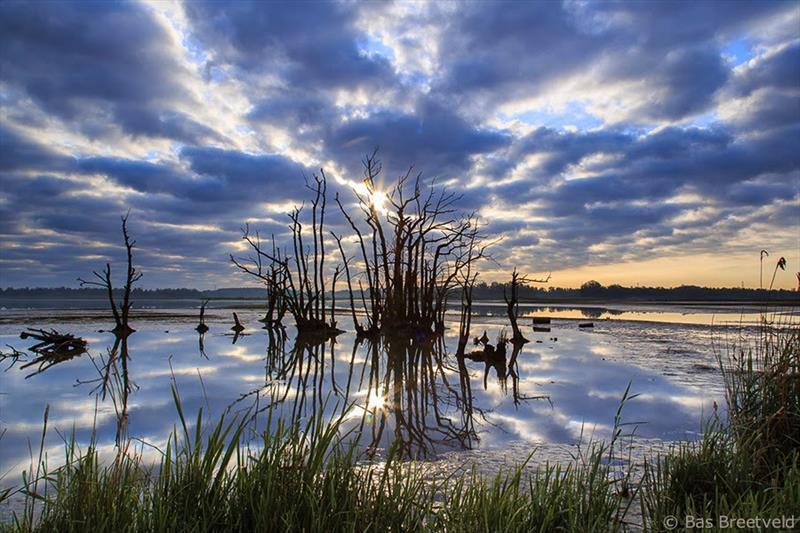 Vakantiehuis te koop Zuid Holland Park De Biesbosch Dordrecht Biesbosch