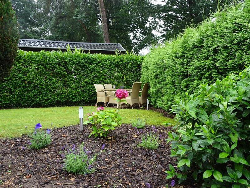 Vakantiehuis te koop Gelderland Ede Zonneoordlaan 47 K86 Toppark Bospark Ede Tuin