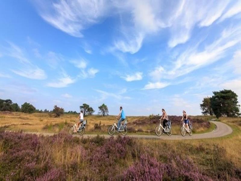 Vakantiehuis te koop Gelderland Epe Tongerenseweg 126 K20 Boerderijpark De Koekamp Nationaal Park De Hoge Veluwe