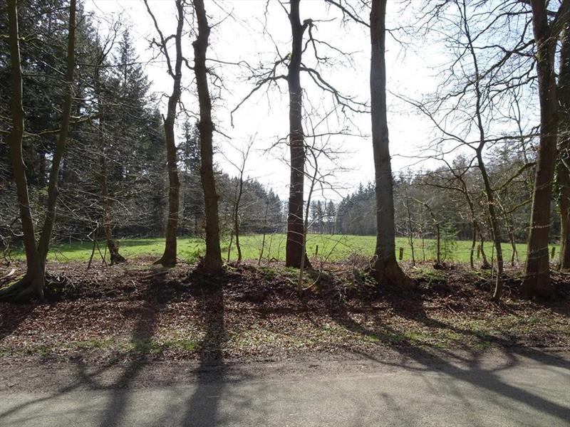 Vakantiehuis te koop Gelderland Hulshorst Harderwijkerweg 495 K006 Park Hulshorsterhout