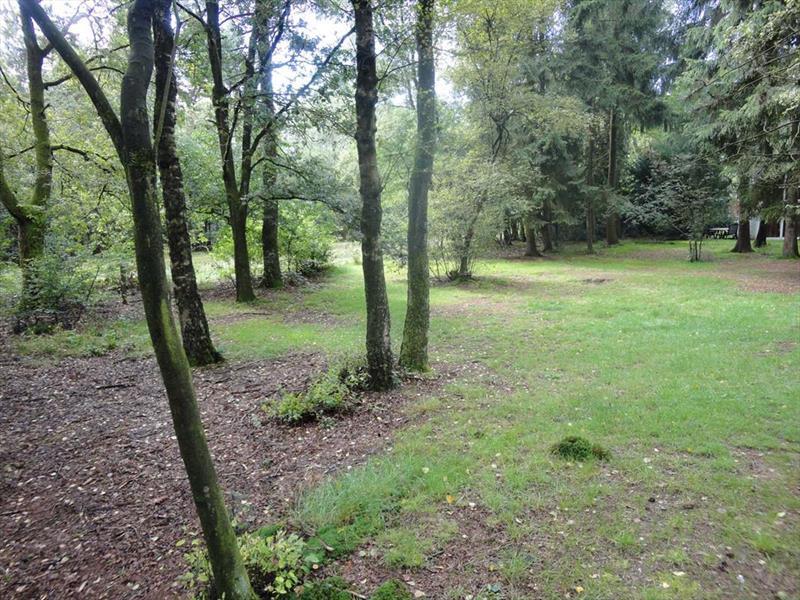 Vakantiehuis te koop Gelderland Kootwijk Kerkendelweg 30 K52 Park De Berkenhorst Uitzicht