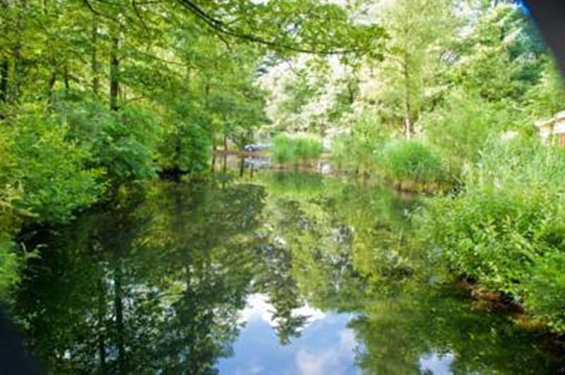Vakantiehuis te koop Gelderland Kootwijk Kerkendelweg 30 K52 Park De Berkenhorst Op het park