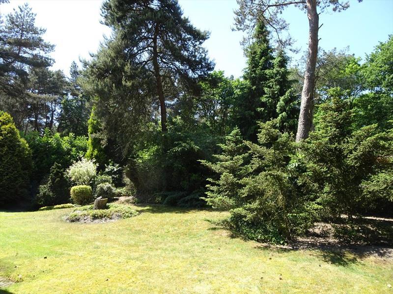 Vakantiehuis te koop Limburg Meijel Steenoven 12 K139 Bungalowpark Stille Wille Tuin