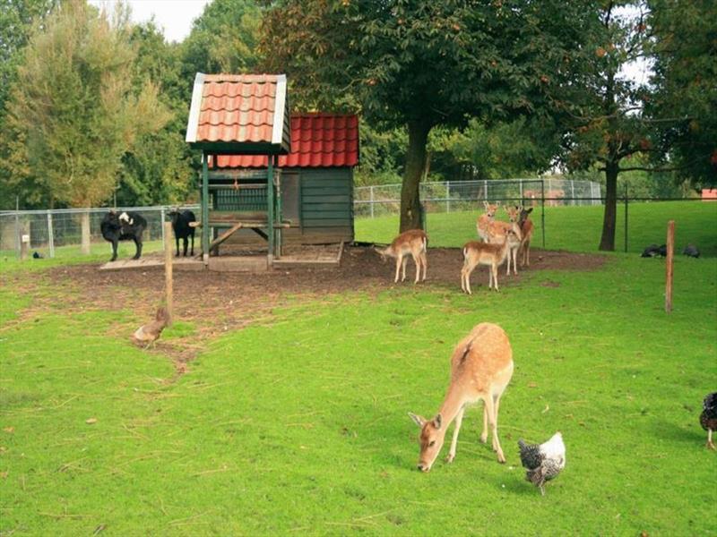 Vakantiehuis te koop Groningen Wedde Paviljoenweg 2 Op het park