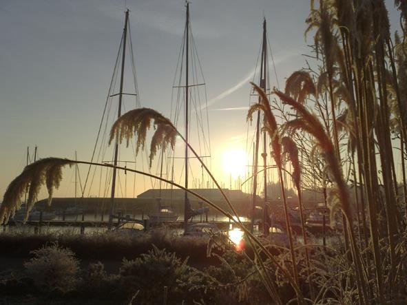 Vakantiehuis te koop N.Holland Wieringerwerf park den Oever Zonsondergang op het park