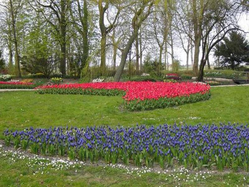 Vakantiehuis te koop N.Holland Wieringerwerf park den Oever Anna Paulowna Poldertuin